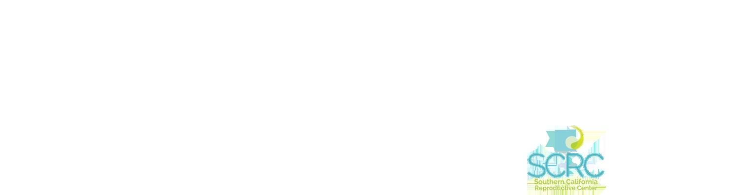 slide-6