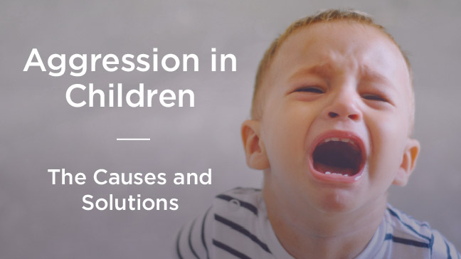 Aggression in Children: Causes and Solutions
