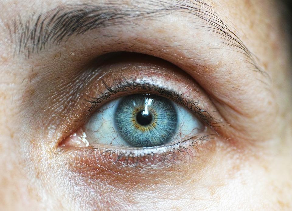 eyebrow-1792296_960_720